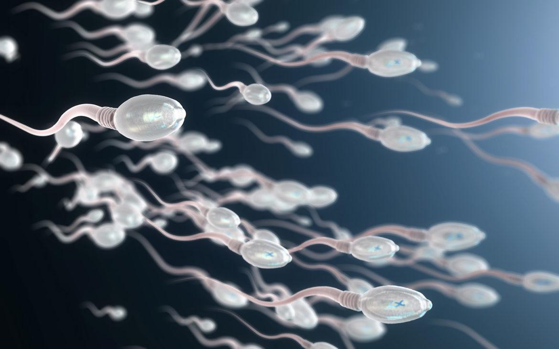 Marihuana może wpływać na zmiany epigenetyczne w męskich komórkach rozrodczych?